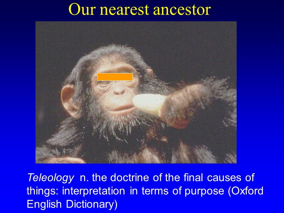 Our nearest ancestor Teleology n.