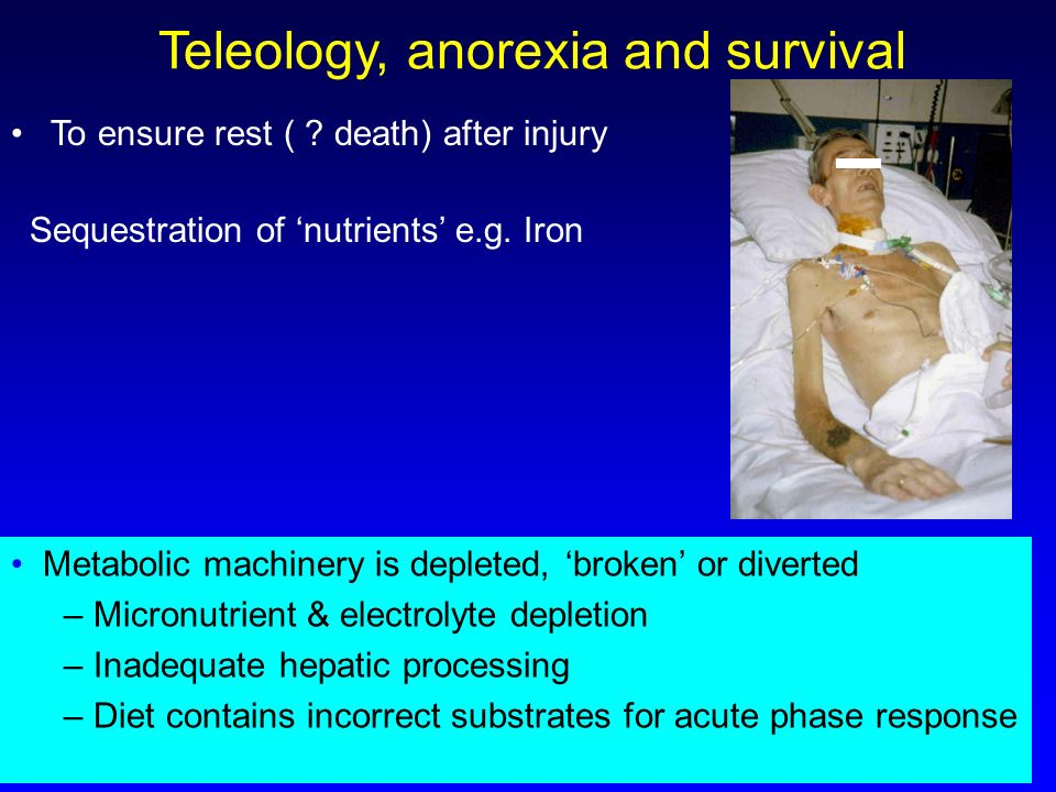 Teleology, anorexia and survival