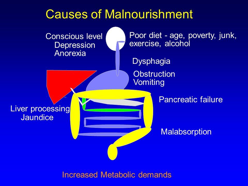 Causes of Malnourishment