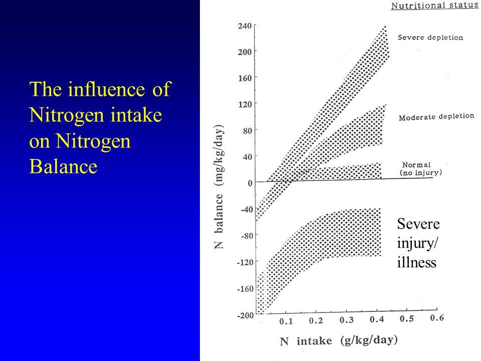 The influence of Nitrogen intake on Nitrogen Balance