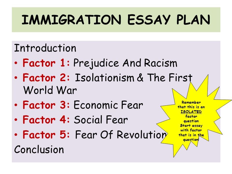 immigrants essays