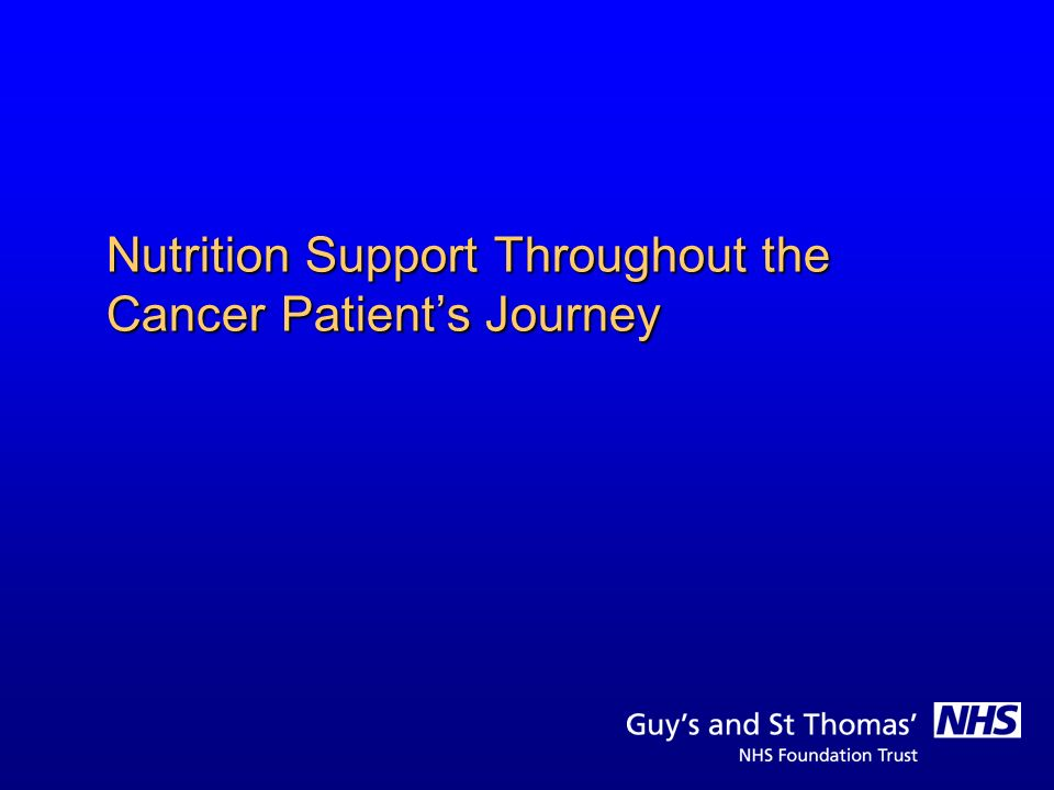 Nutrition Support Throughout the Cancer Patient's Journey
