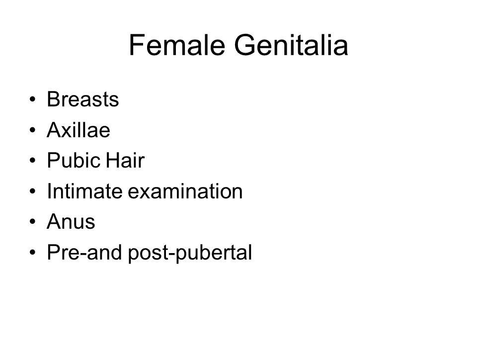 Female Genitalia Breasts Axillae Pubic Hair Intimate examination Anus