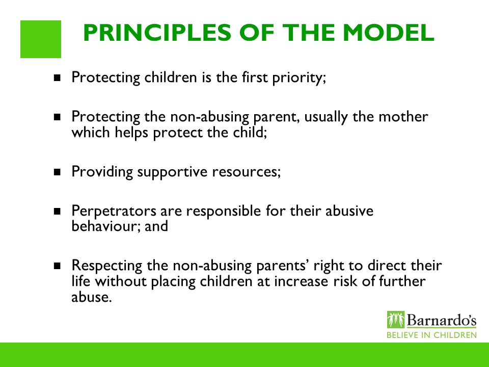 PRINCIPLES OF THE MODEL