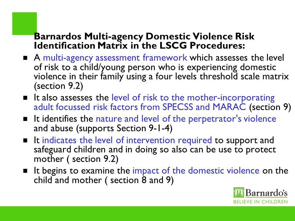 Barnardos Multi-agency Domestic Violence Risk Identification Matrix in the LSCG Procedures: