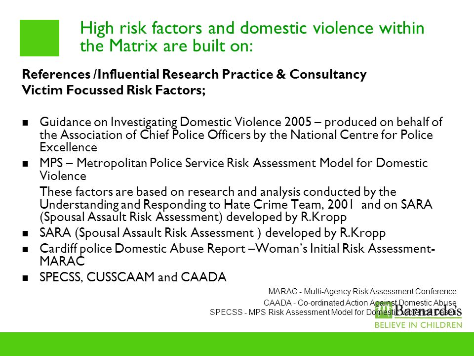 High risk factors and domestic violence within the Matrix are built on: