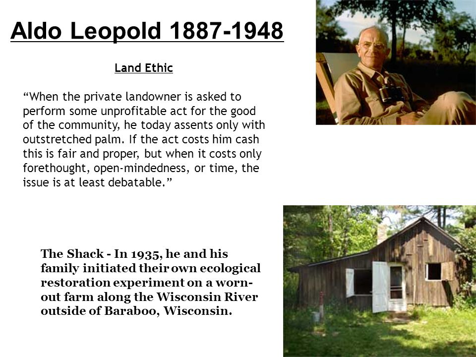 "aldo leopold essay land ethic Seminar paper #1: summary of aldo leopold's ""the land ethic"" aldo leopold's essay ""the land ethic,"" was written in 1949 the wolf had been eradicated from."