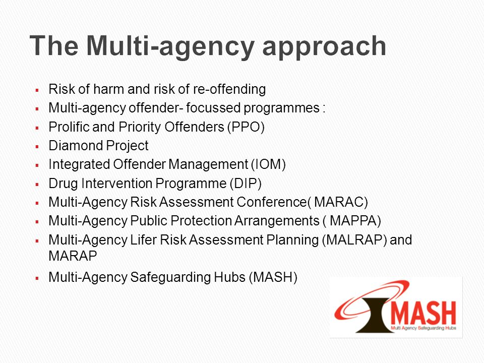 The Multi-agency approach