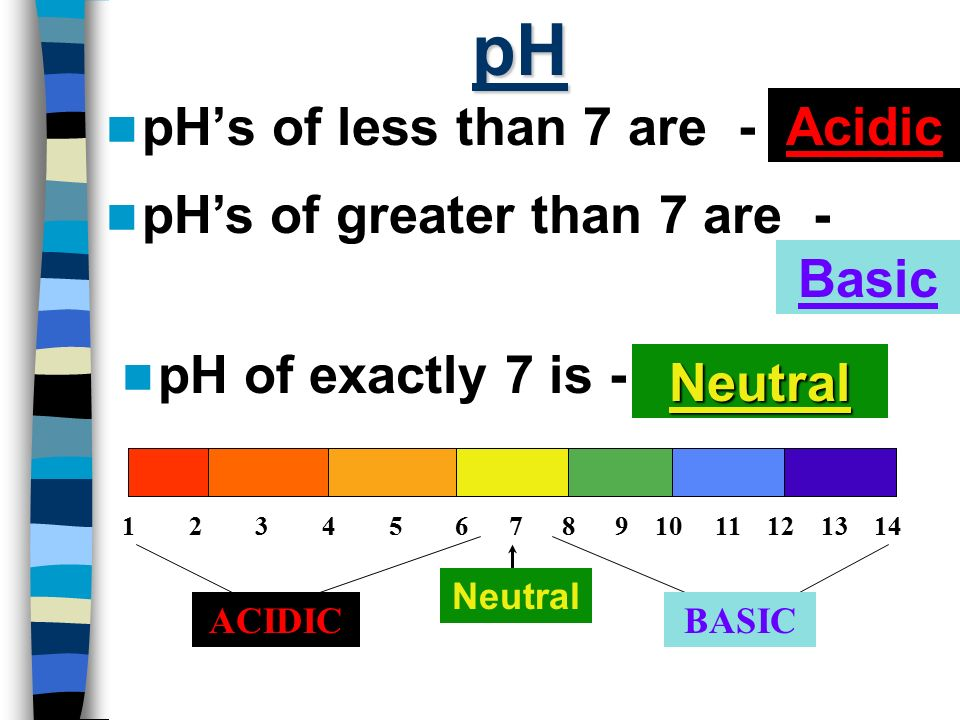 pH pH's of less than 7 are - Acidic pH's of greater than 7 are - Basic
