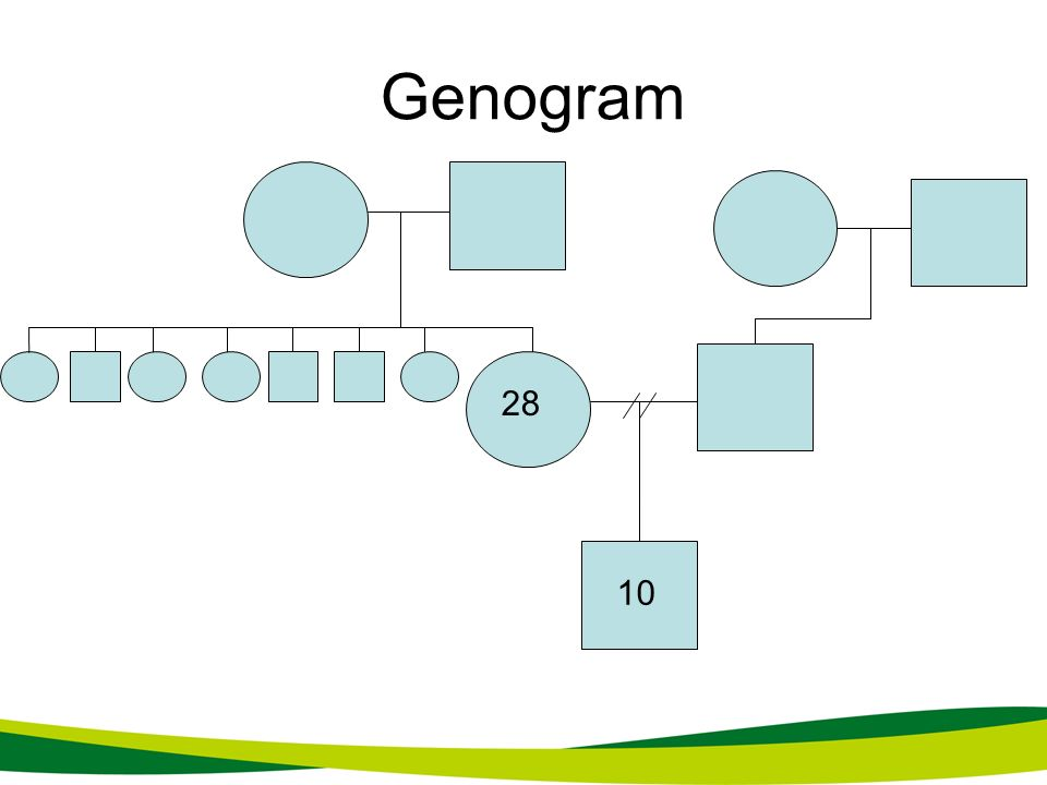 Genogram 28 10