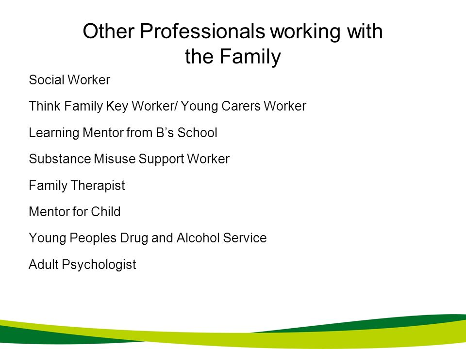 Other Professionals working with the Family