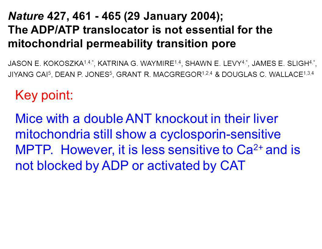 Nature 427, 461 - 465 (29 January 2004); The ADP/ATP translocator is not essential for the mitochondrial permeability transition pore.
