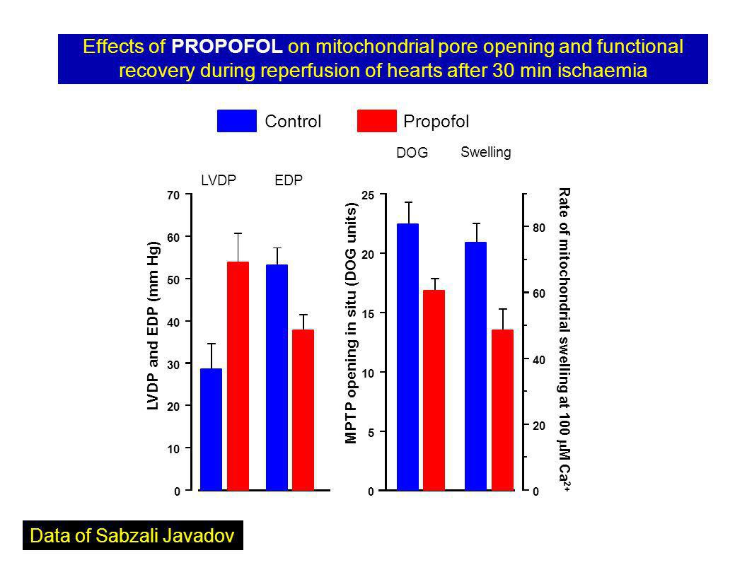Effects of PROPOFOL on mitochondrial pore opening and functional recovery during reperfusion of hearts after 30 min ischaemia