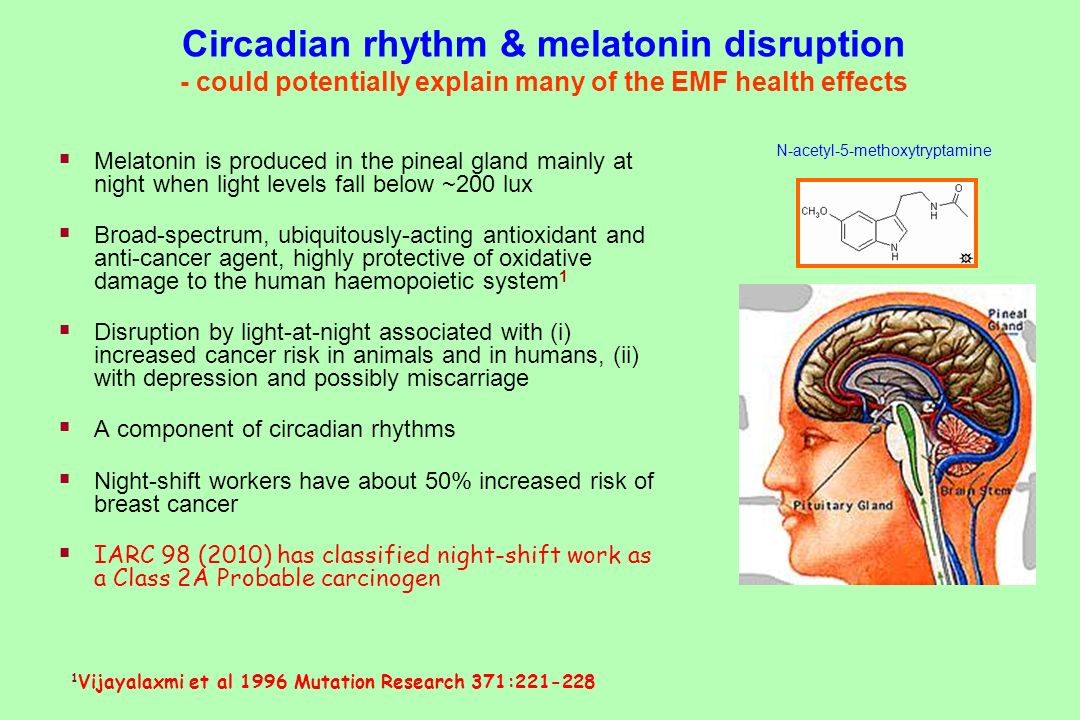 Circadian rhythm & melatonin disruption - could potentially explain many of the EMF health effects