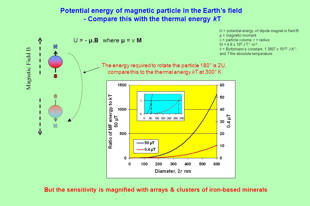 N S Potential energy of magnetic particle in the Earth's field