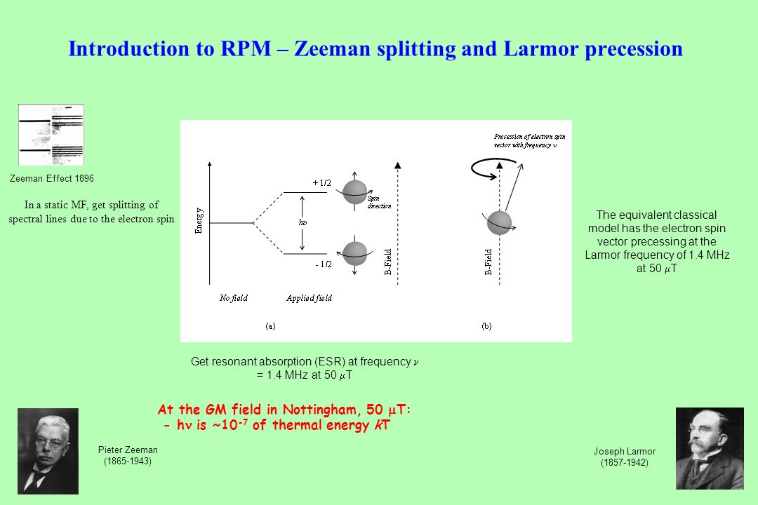 Introduction to RPM – Zeeman splitting and Larmor precession