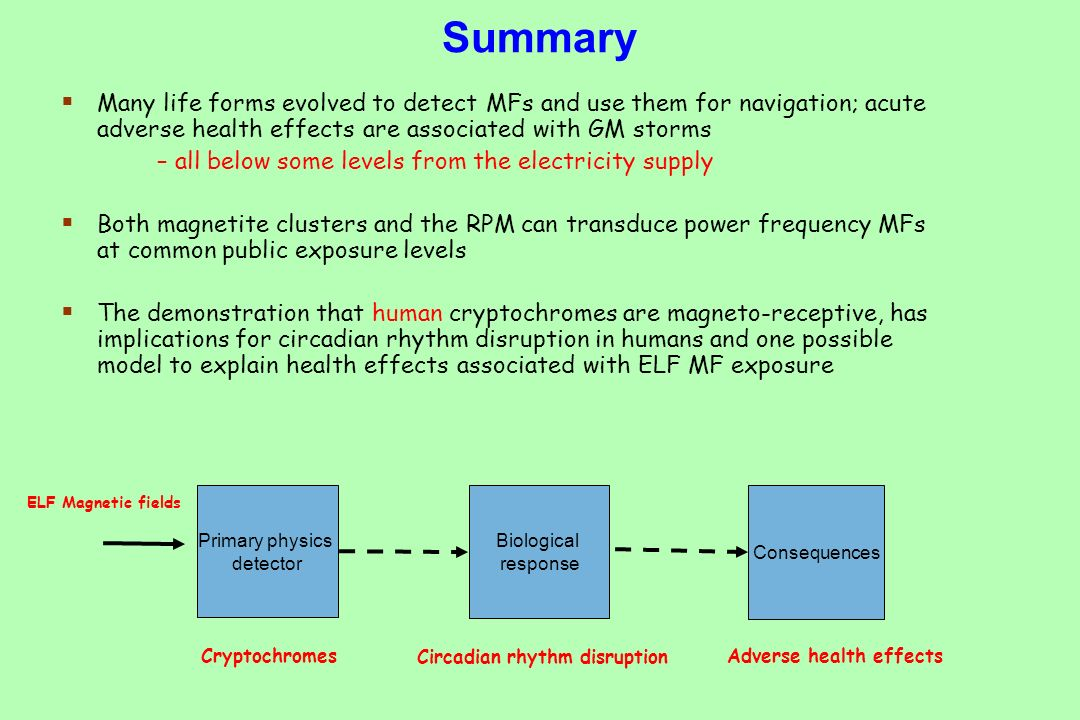 Summary Many life forms evolved to detect MFs and use them for navigation; acute adverse health effects are associated with GM storms.