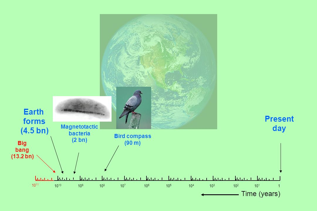 Earth forms (4.5 bn) Present day