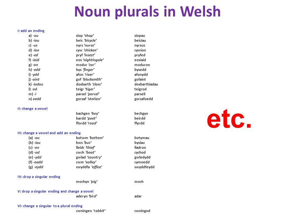 etc. Noun plurals in Welsh