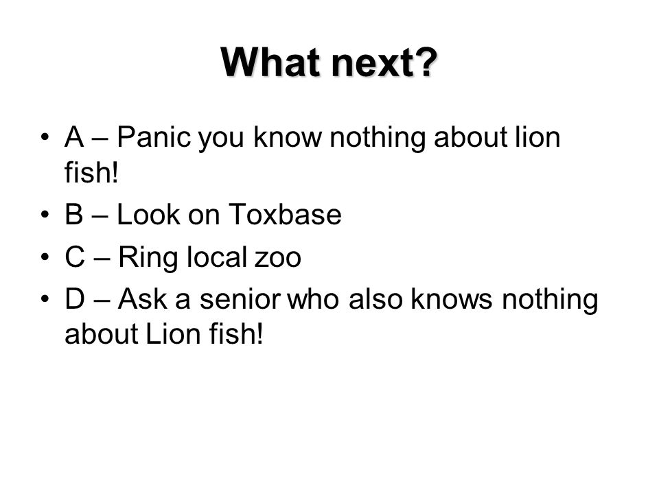 What next A – Panic you know nothing about lion fish!