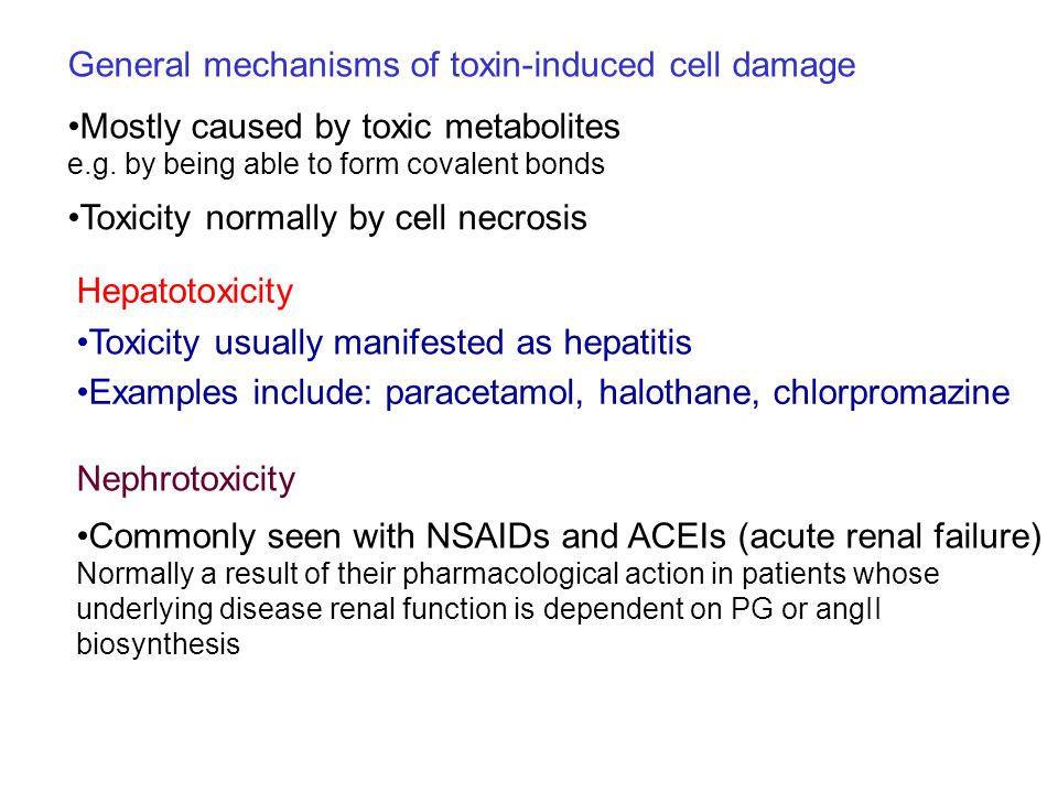 General mechanisms of toxin-induced cell damage