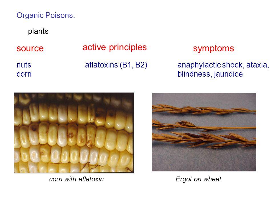 source active principles symptoms Organic Poisons: plants nuts corn