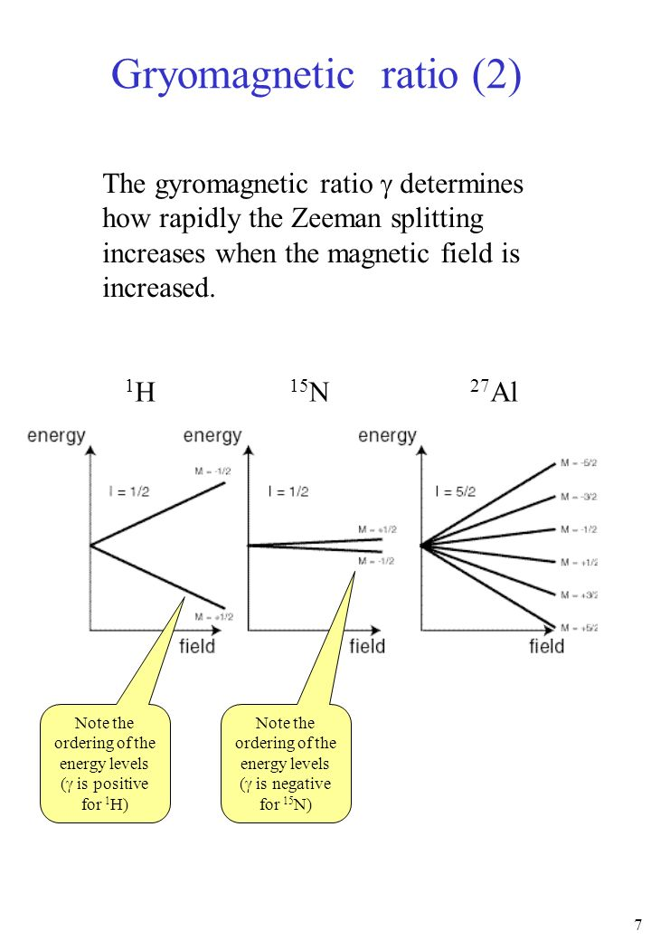 Gryomagnetic ratio (2) The gyromagnetic ratio g determines how rapidly the Zeeman splitting increases when the magnetic field is increased.