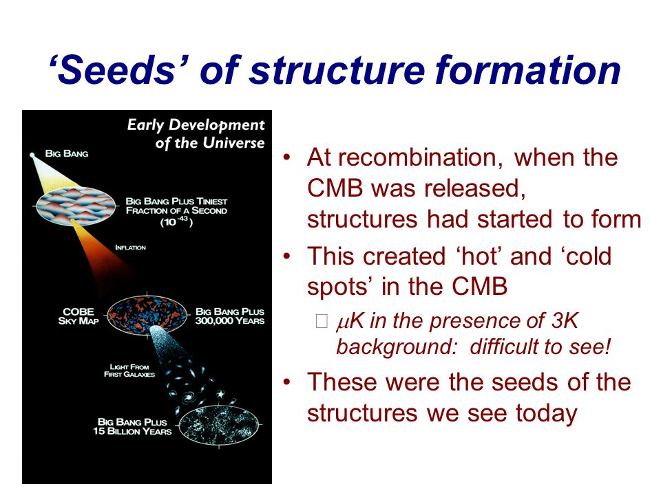 'Seeds' of structure formation