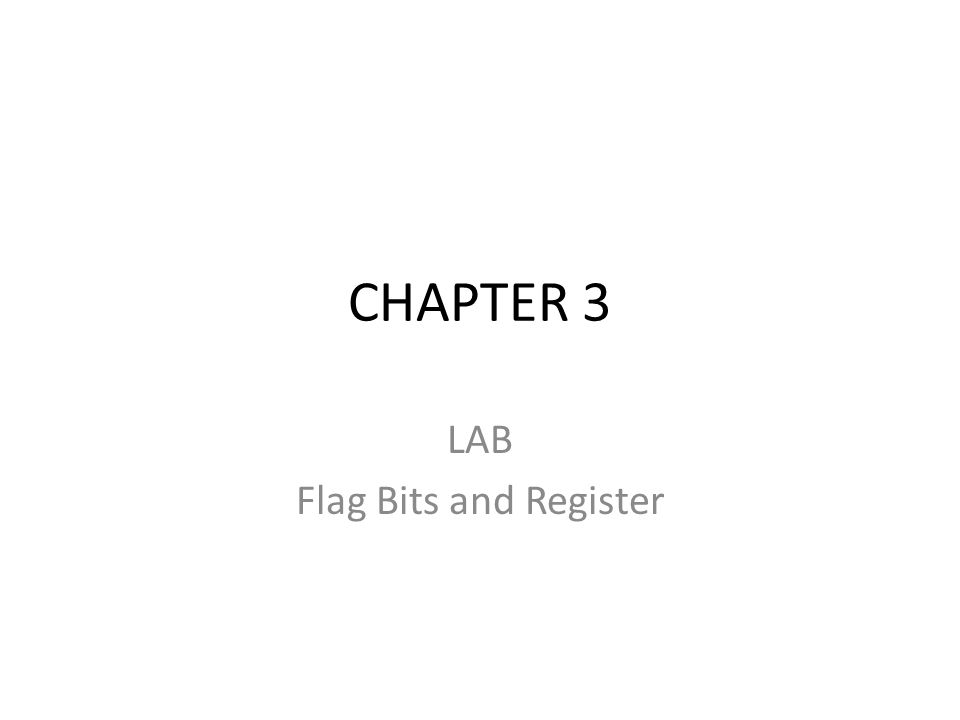 LAB Flag Bits and Register