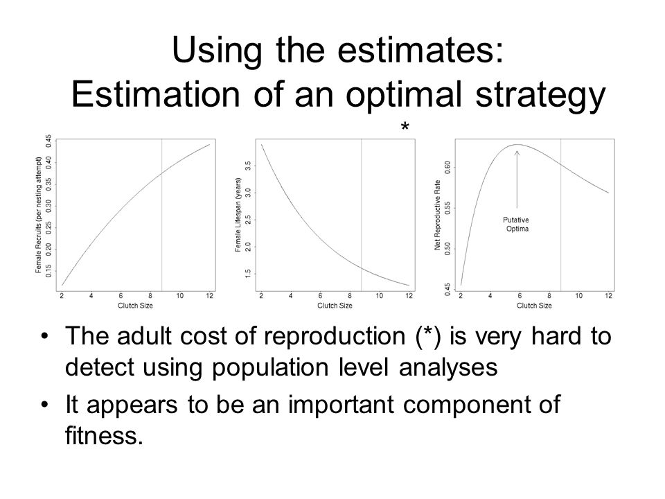 Using the estimates: Estimation of an optimal strategy