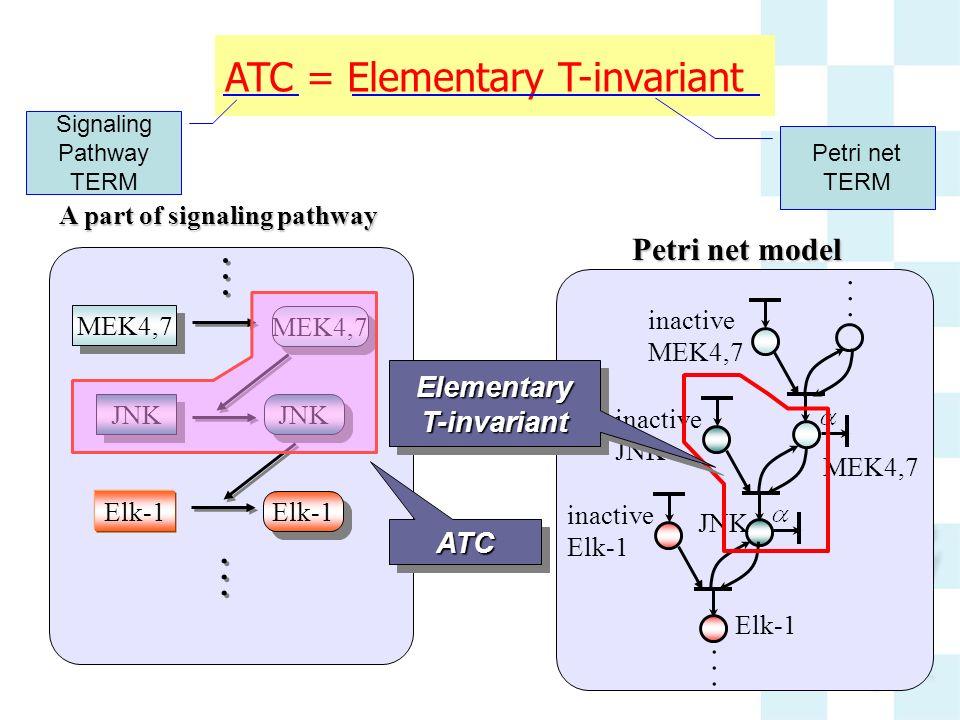 Elementary T-invariant
