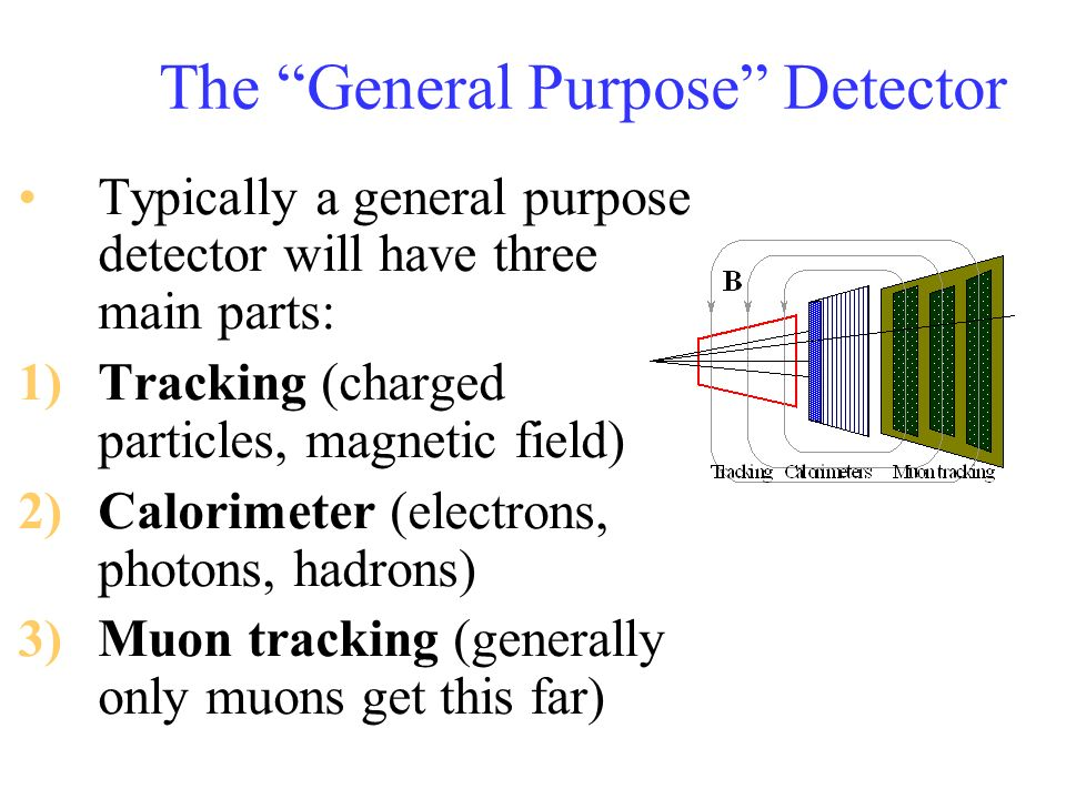 The General Purpose Detector