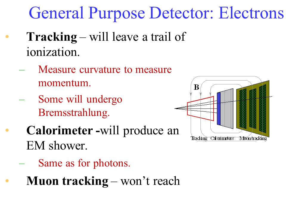 General Purpose Detector: Electrons