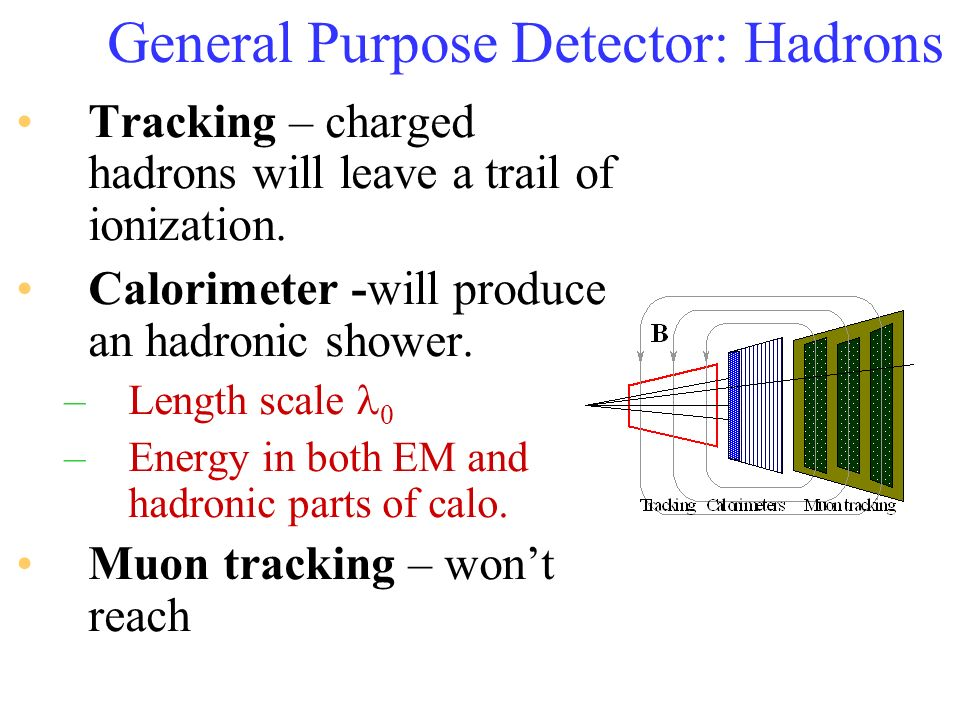 General Purpose Detector: Hadrons