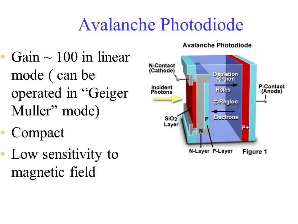 Avalanche Photodiode Gain ~ 100 in linear mode ( can be operated in Geiger Muller mode) Compact.