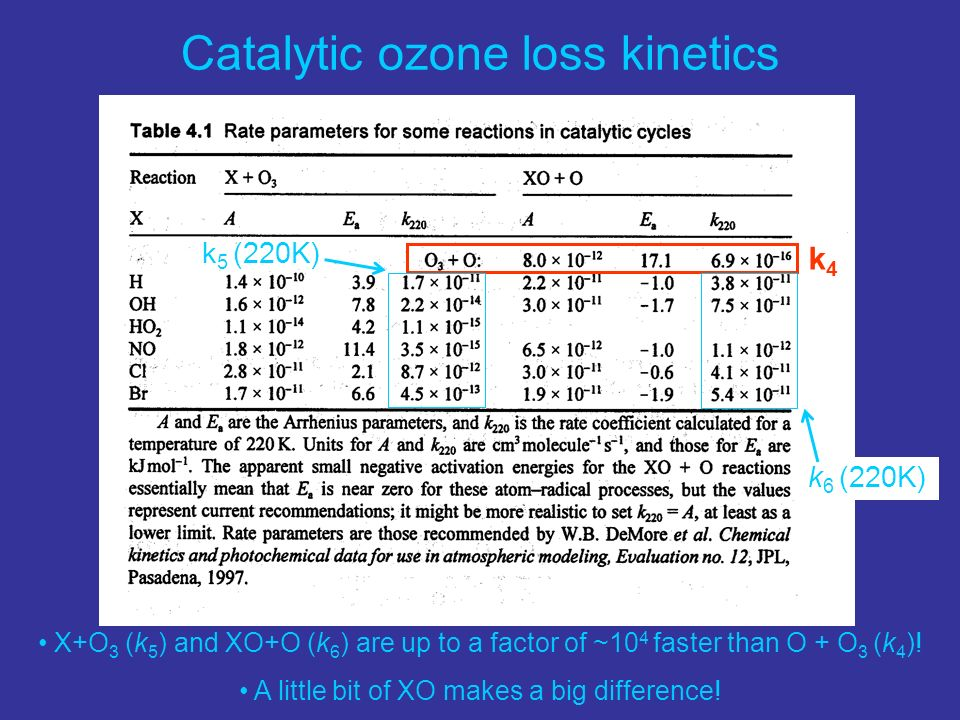 Catalytic ozone loss kinetics