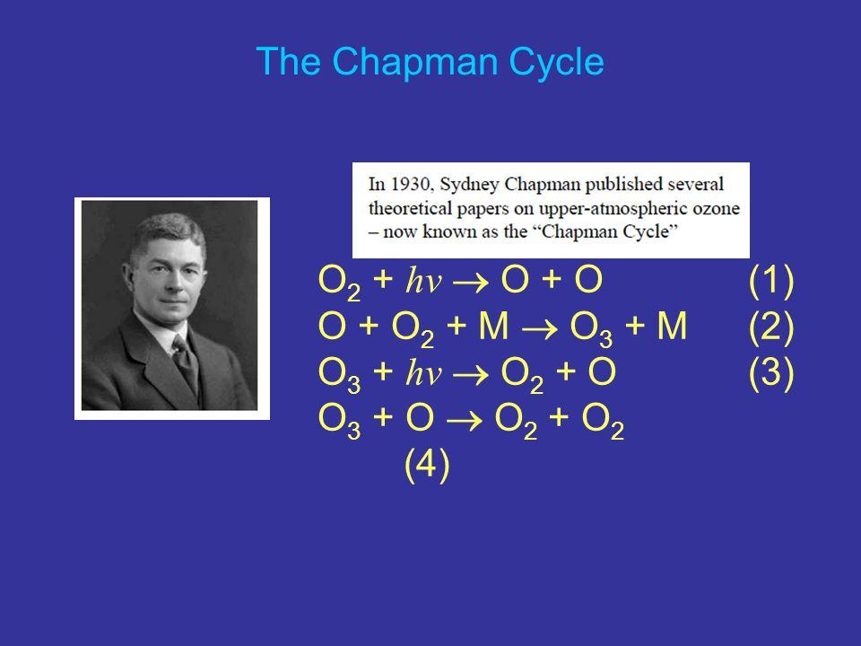 The Chapman Cycle O2 + hv  O + O (1) O + O2 + M  O3 + M (2) O3 + hv  O2 + O (3) O3 + O  O2 + O2 (4)
