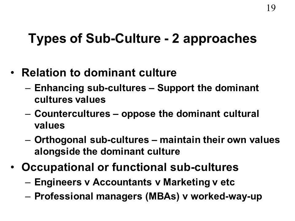 Types of Sub-Culture - 2 approaches