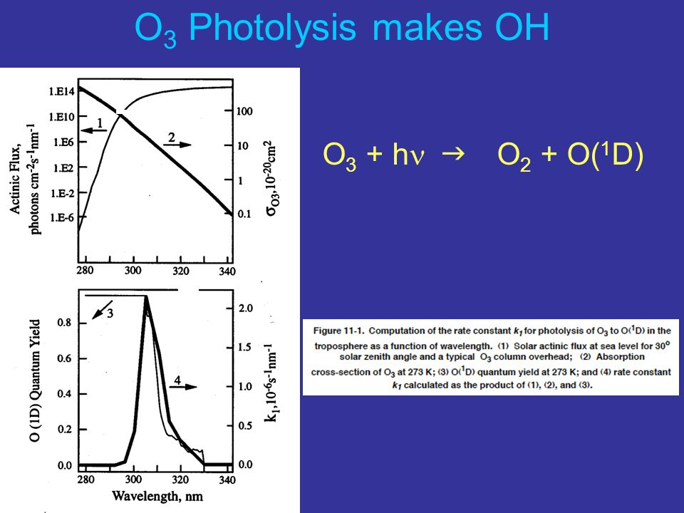 O3 Photolysis makes OH O3 + hn g O2 + O(1D)