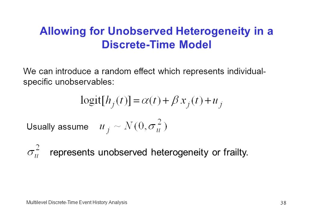Allowing for Unobserved Heterogeneity in a Discrete-Time Model