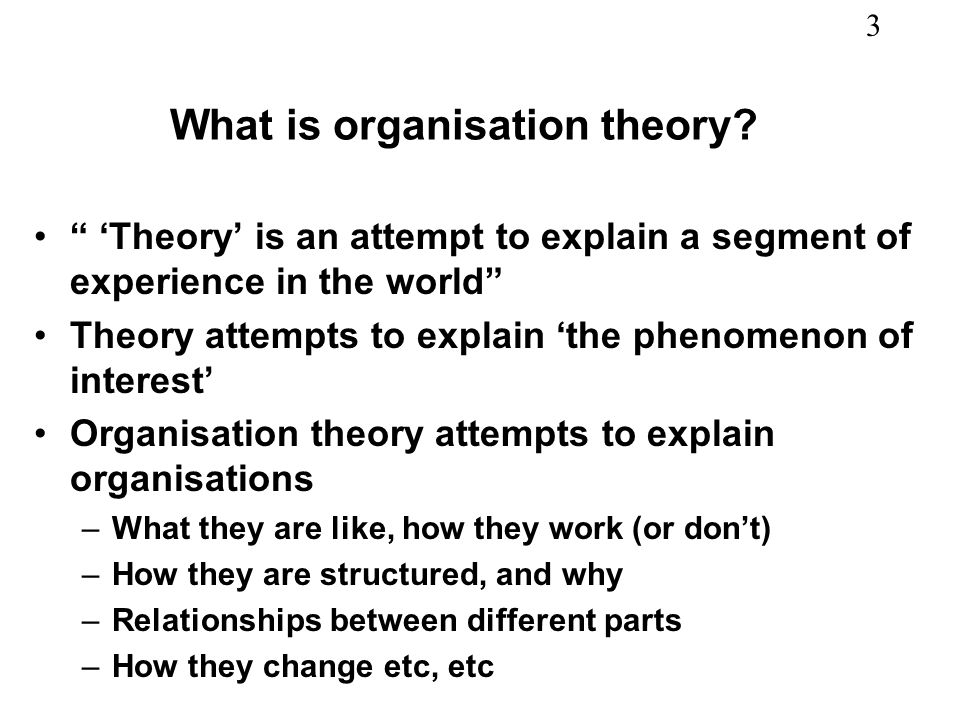What is organisation theory