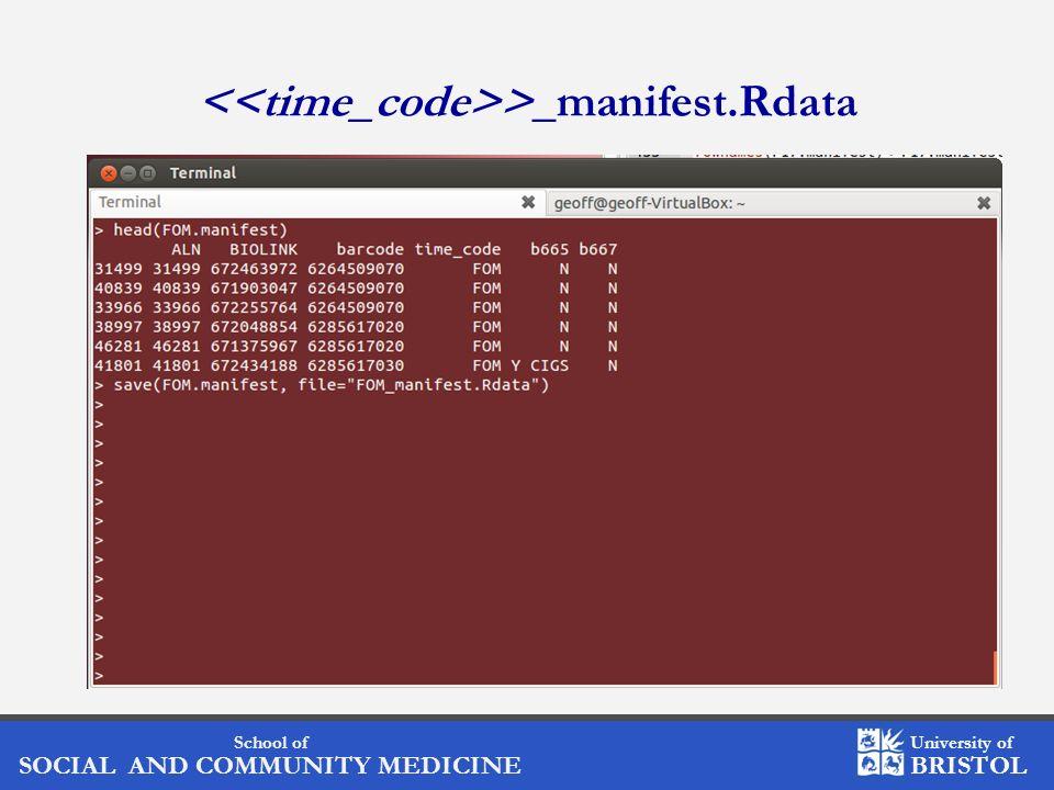 <<time_code>>_manifest.Rdata