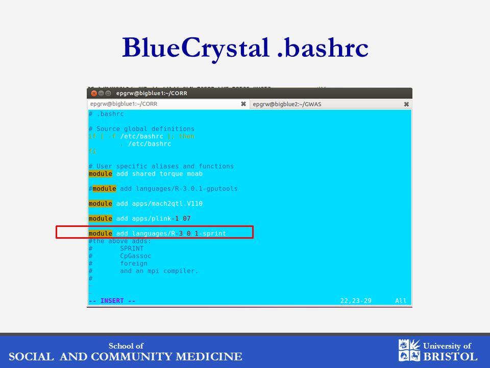 BlueCrystal .bashrc