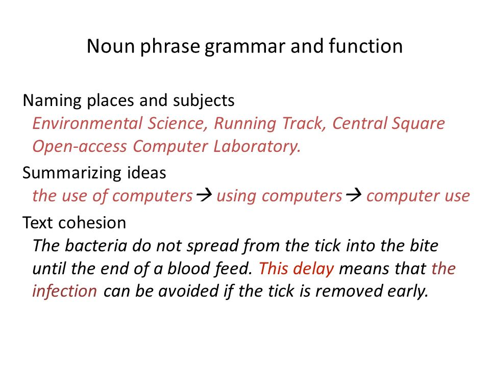 Noun phrase grammar and function