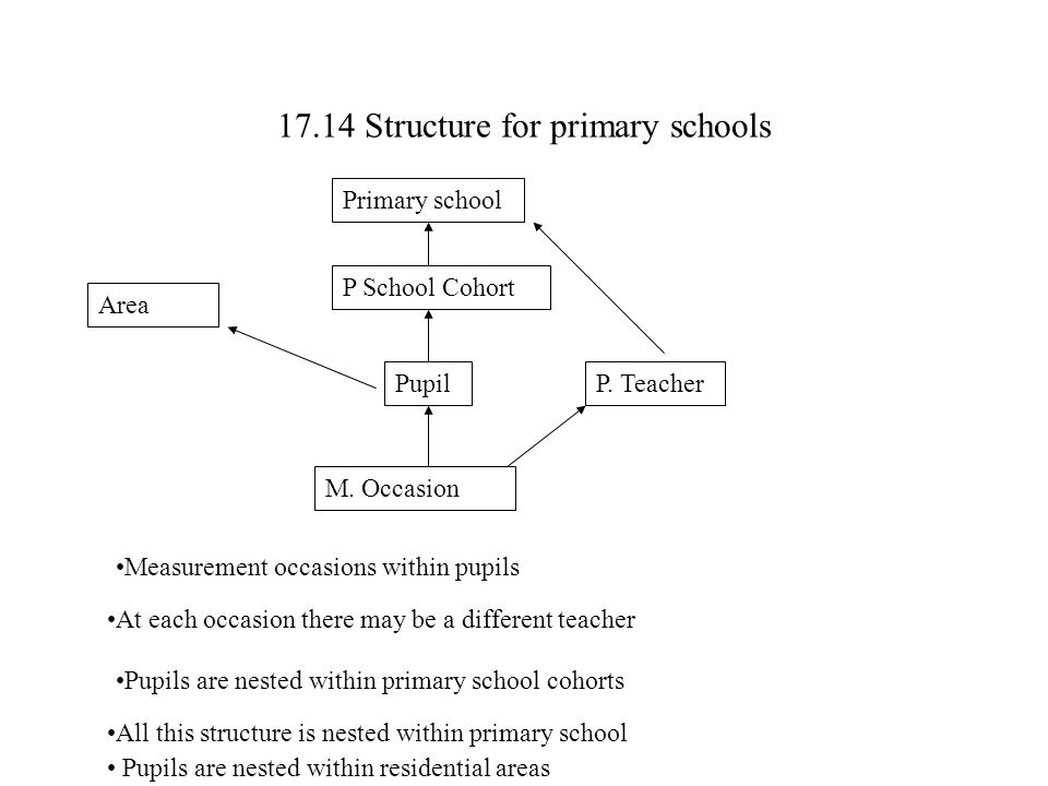 17.14 Structure for primary schools