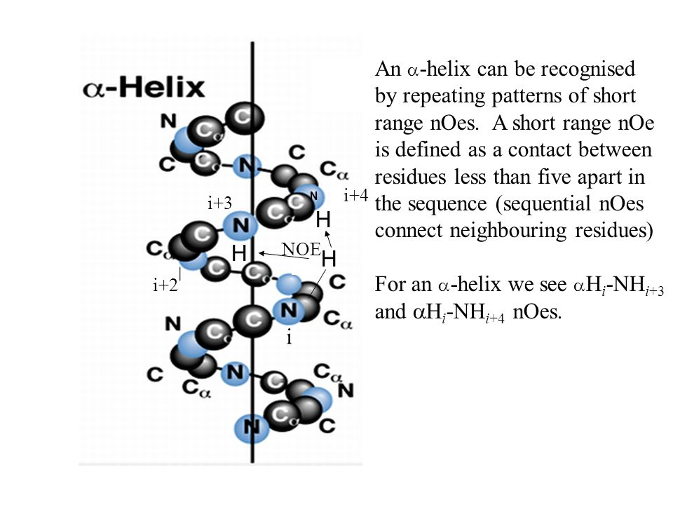 An a-helix can be recognised by repeating patterns of short