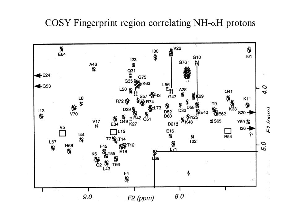 COSY Fingerprint region correlating NH-aH protons