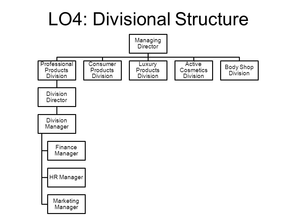 the body shop organisational structure The body shop can adapt with the changing and seems like success to maintain everything was owing to the body shop has good quality coordination on mutual understanding foundation within their organization and, in spite of change body shop organization structure and take in hand for their work, l'oreal did not take action to change everything.