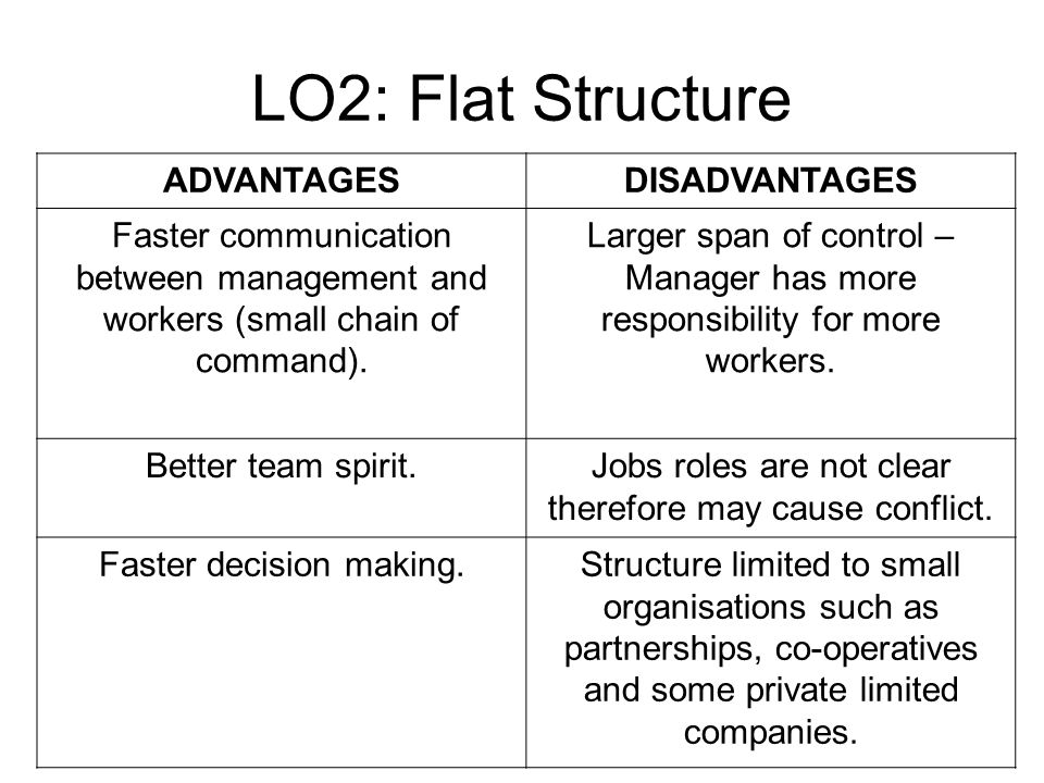 advantages and disadvantages of flat organisation structure Challenges of functional structure and operational issues regardless of the advantages of the functional structure, there are a number of challenges involved first, because of the hierarchical nature of decision making, the system is likely to be bedevilled with.