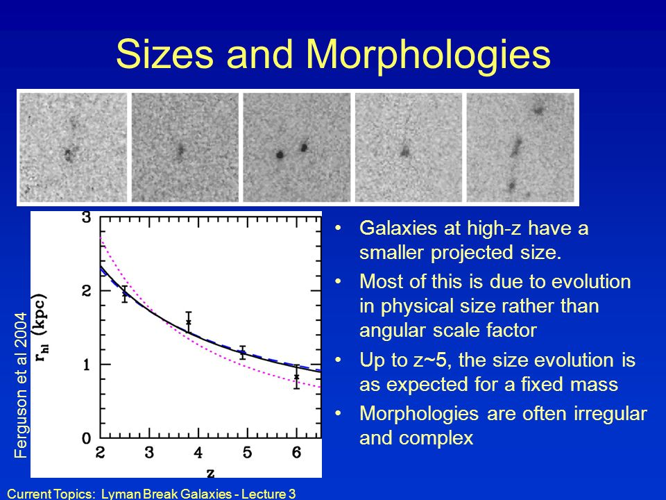 Sizes and Morphologies